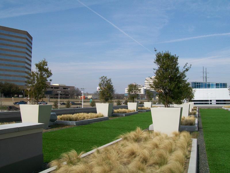 Rorest park medical center Dallas_Cardiff